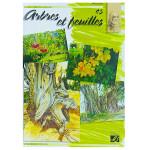 Album d'étude n°45 arbres et feuilles